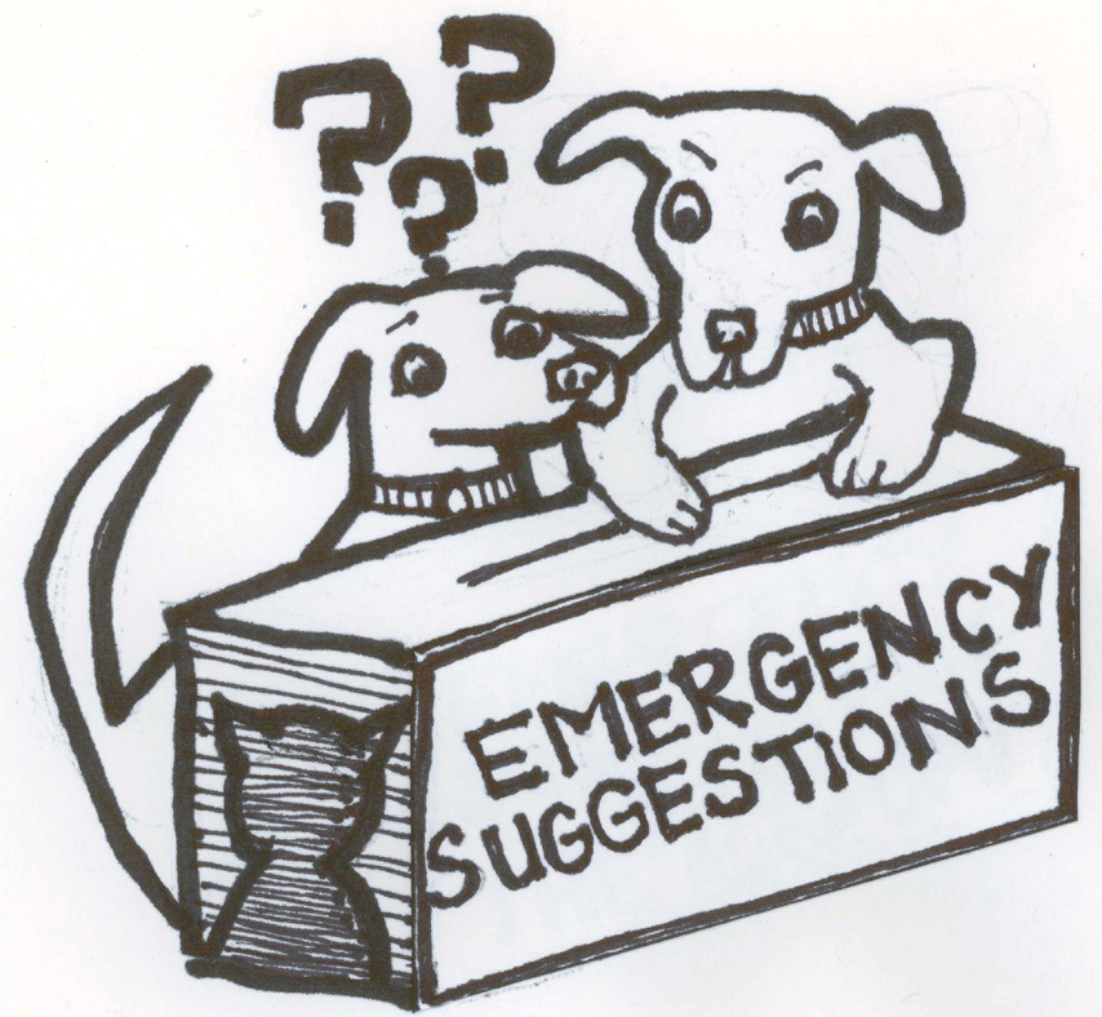 Emergency Suggestions for Dogs