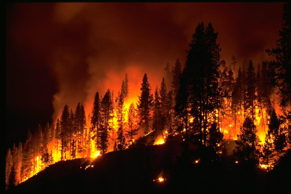 Wildfire pic uploaded to Cutting Edge - Hazards